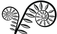 fiddle logo